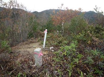 19P1030406伐採展望地(360度・前方は山口尾).JPG