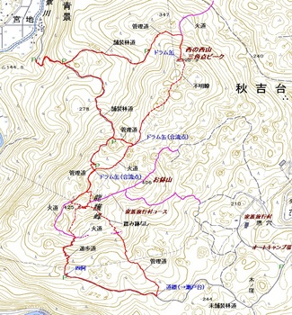 西の西山・龍護峰.jpg