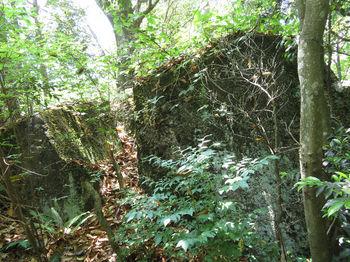 IMG_0661黒岩(東方向から).JPG