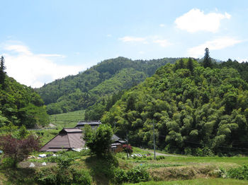 IMG_0831野丸岳.JPG