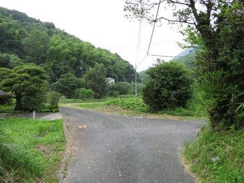IMG_1074分岐(右折).JPG