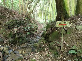 IMG_1094谷出合い・道標.JPG