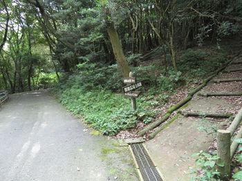 IMG_1125舗装道出合い・道標.JPG