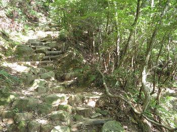 IMG_1378上り道・急な石段.JPG