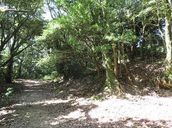IMG_1386 三角点山頂(右).JPG