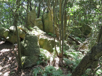 IMG_1443重ね岩①.JPG