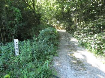 IMG_1488登山口・舗装作業道.JPG