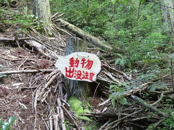 IMG_1504表示板(動物出没注意).JPG