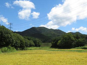 IMG_1598広域農道から大将山.JPG