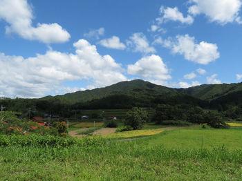 IMG_1600赤松バス停より大将山.JPG