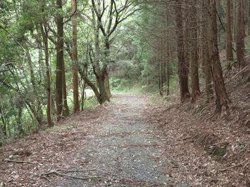 IMG_1852旧山陽道.JPG