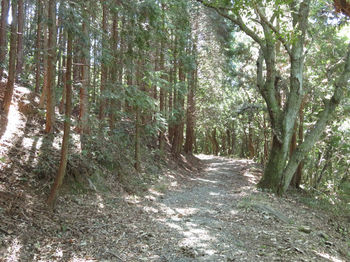 IMG_1955旧山陽道.JPG