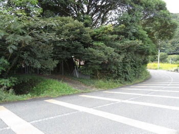 IMG_2271 用水路管理道入口.JPG