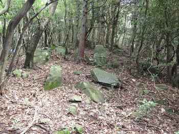 IMG_2342植林境・上り.JPG