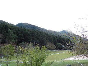 IMG_2380 森の家付近から431mピーク.JPG