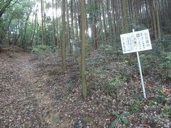 IMG_2555公社造林看板.JPG