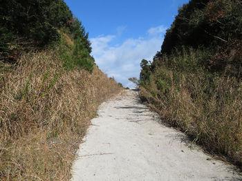 IMG_3147林道(左方向)・石穴垰.JPG