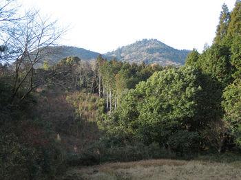 IMG_3598市境付近から荒滝山.JPG