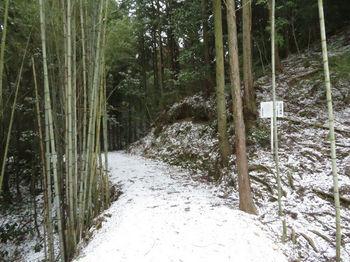 IMG_4302造林看板・林道.JPG