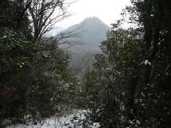 IMG_4322展望岩分岐部の切開き・荒滝山.JPG