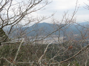 IMG_4446古烏帽子山.JPG