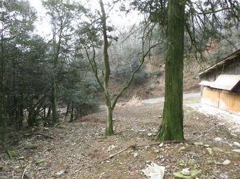 IMG_4470林道が見える.JPG