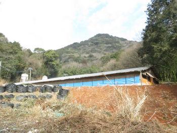 IMG_4473鶏舎・江船山.JPG
