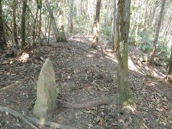 IMG_4541石杭「村有林界」.JPG