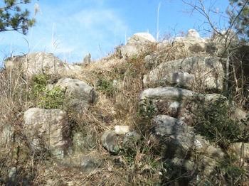IMG_4547山頂直下の岩塊.JPG