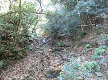 IMG_4649左の谷.JPG