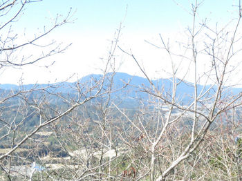 IMG_4677華山.JPG