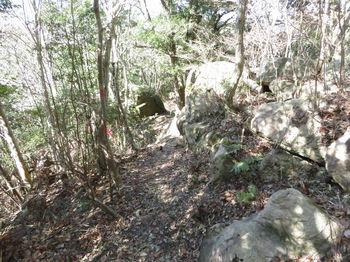 IMG_4742岩塊の尾根.JPG