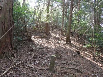 IMG_4903植林境・上り.JPG