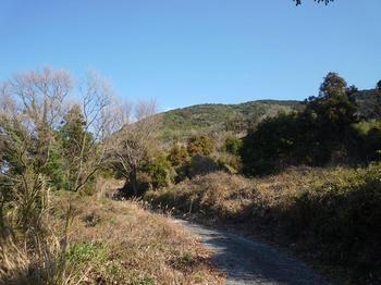 P1010196日見側の林道.JPG
