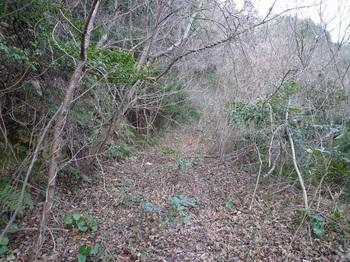 P1010267荒れ林道.JPG