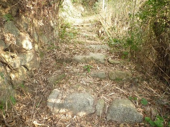 P1010288往還道の石畳.JPG