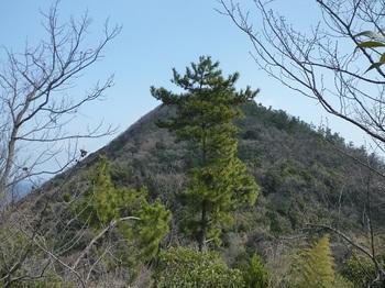 P1010360狼煙場跡から魔山.JPG