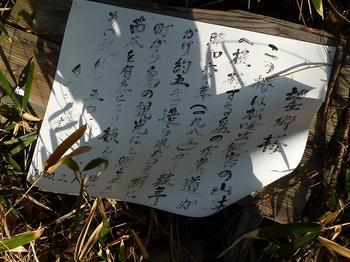 P1010561望郷桜看板.JPG