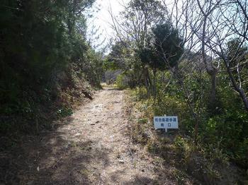 P1010593遊歩道南口.JPG