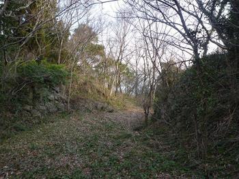 P1010628林道に出る.JPG