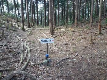 P1010750道標.JPG