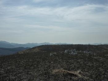 P1010848三角点から西の西山山頂.JPG
