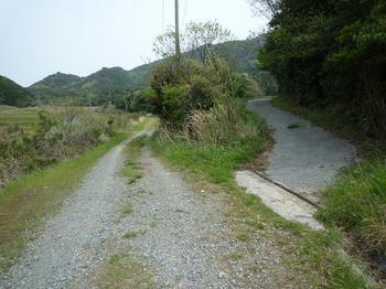 P1010966筒尾コース登山口(林道入口).JPG