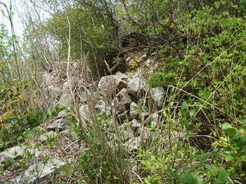 P1010978山頂に残る石垣.JPG