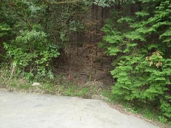 P1020029登山口.JPG