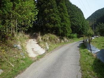 P1020050林道分岐.JPG