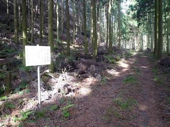 P1020051公社造林看板.JPG