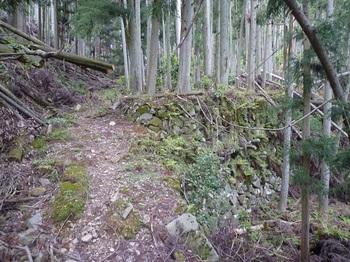 P1020090山道(逆方向).JPG