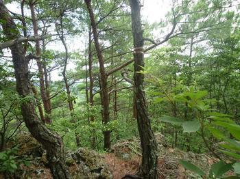 P1020306展望岩からの眺め.JPG