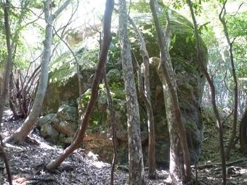 P1020579展望岩.JPG